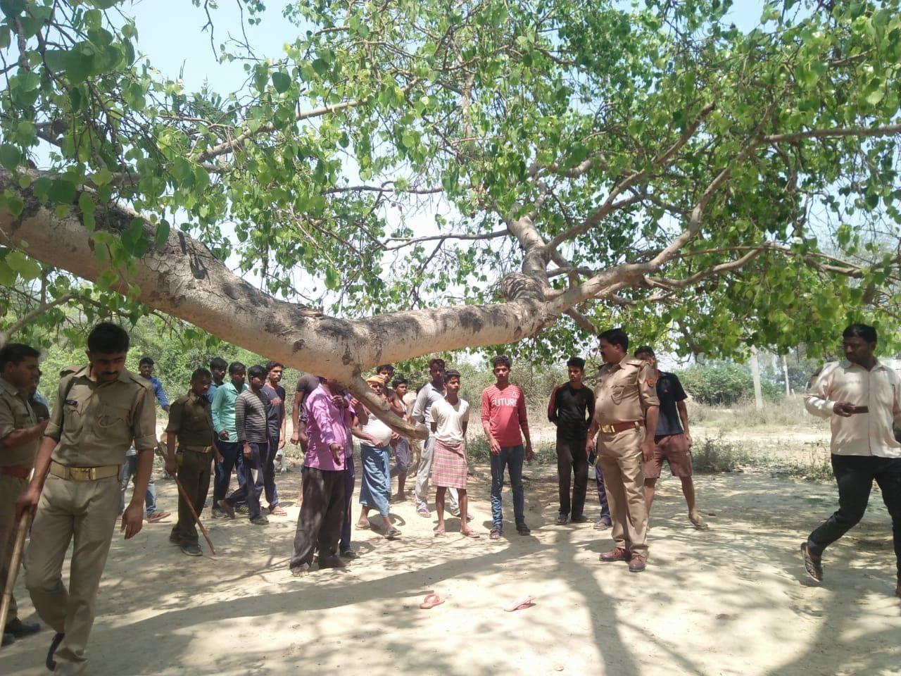 रंजिश में मासूम उतारा मौत के घाट, शव पेड़ पर लटकता मिला