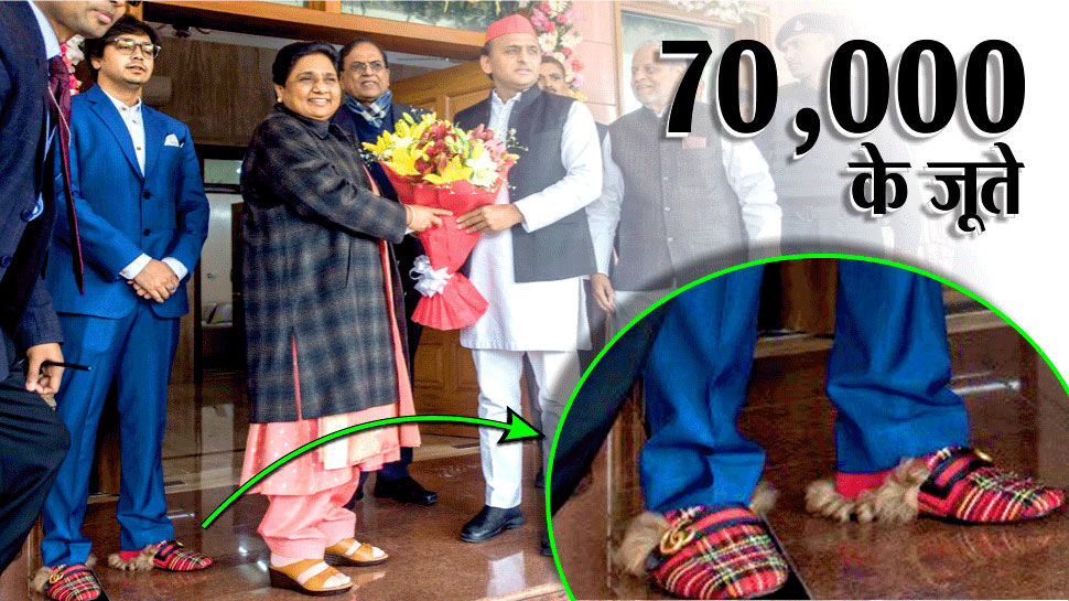 मायावती के सेंडिल के बाद भतीजे के महंगे जूते की उठी बात, बीजेपी के इस नेता ने शेयर की तस्वीरें और कीमत