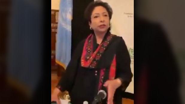 PAK की इंटरनेशनल बेइज्जती! UN में पाक अधिकारी पर भड़का पाकिस्तानी, पूछा- 20 साल से किया क्या