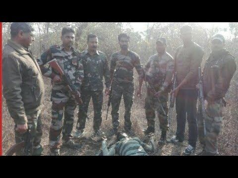 बबली कोल का एनकाउंटर यूपी पुलिस ने किया, डाकू सोहन कोल ने किया खुलासा