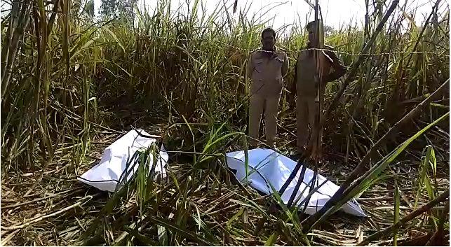 बिजनौर में दो सगे भाइयों के शव मिलने से मची सनसनी,  तीन थानों की पुलिस मौके पर पहुंची