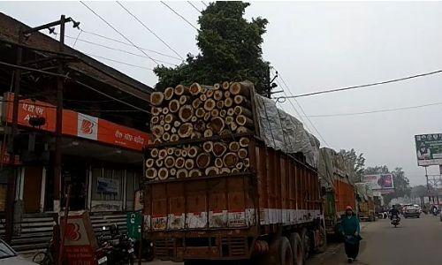 बिजनौर: लकड़ी भरे गाड़ी को पुलिस ने पकड़ी