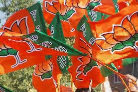 दिल्ली विधानसभा चुनाव: केजरीवाल के खिलाफ प्रत्याशी बदलेगी बीजेपी