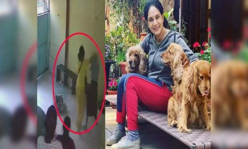 भारत में डरने वाले नसीरुद्दीन शाह की बेटी ने वेटनरी क्लीनिक में 2 महिला कर्मचारियों को पीटा