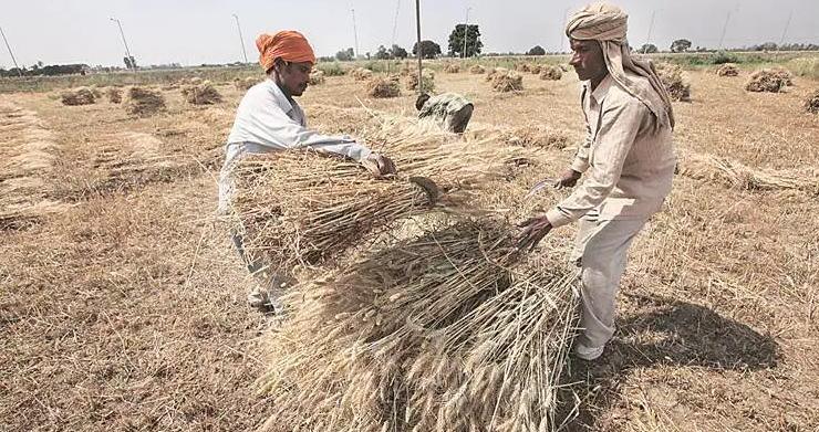 कोरोना : खेती-किसानी को लॉकडाउन से छूट, खुली रहेंगी बीज-खाद और कीटनाशकों की दुकानें