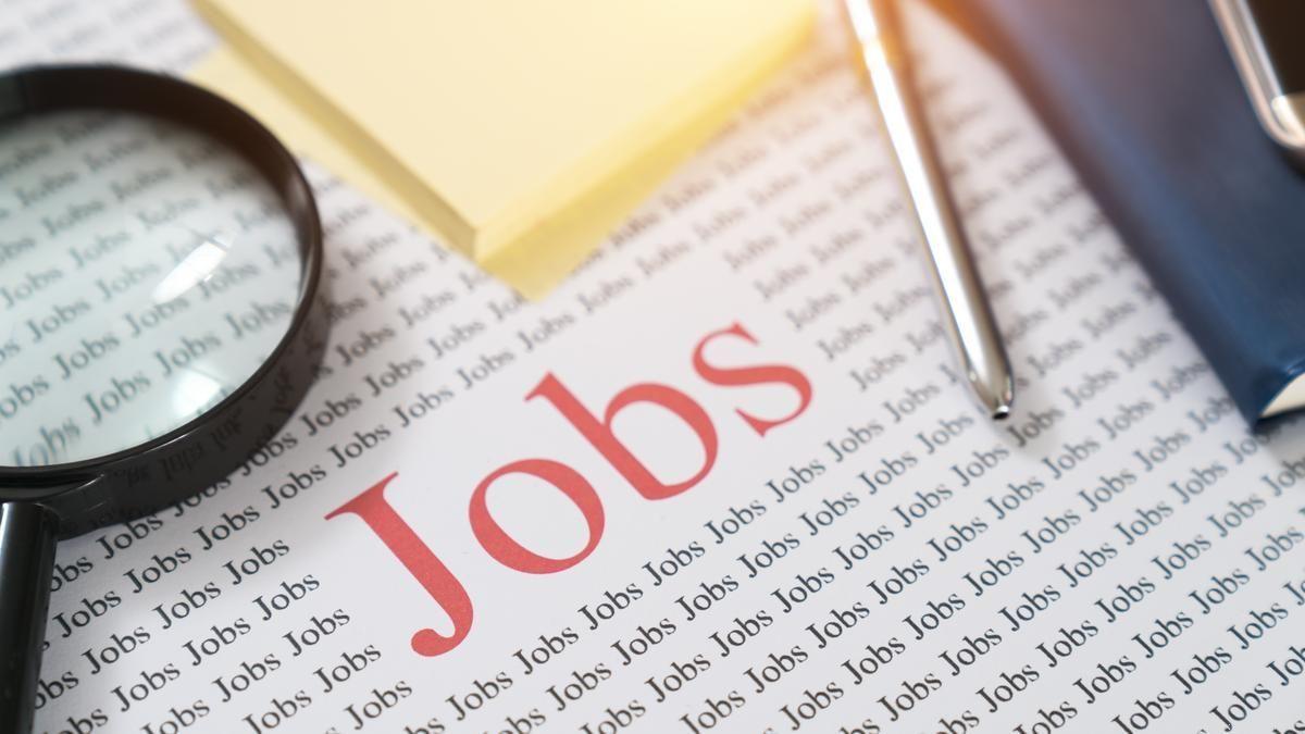 बिना परीक्षा के सरकार दे रही नौकरी का मोका, ग्रेजुएट्स कर सकते हैं एप्लाई